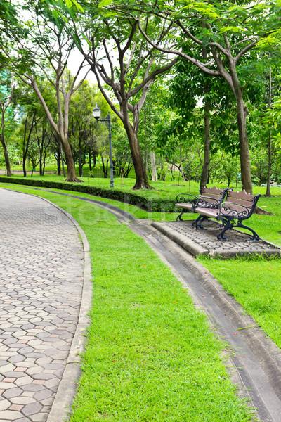 椅子 公園 春 草 自然 光 ストックフォト © tungphoto