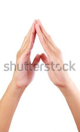put hands together in salute Stock photo © tungphoto