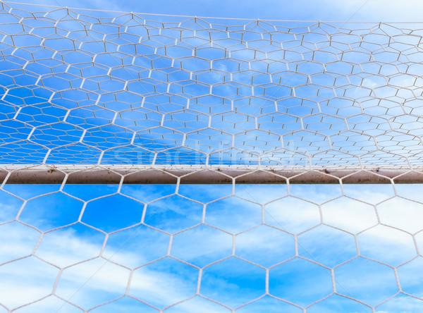 Futballabda gól net sport futball nyár Stock fotó © tungphoto