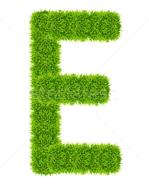 green grass letter E Isolated Stock photo © tungphoto