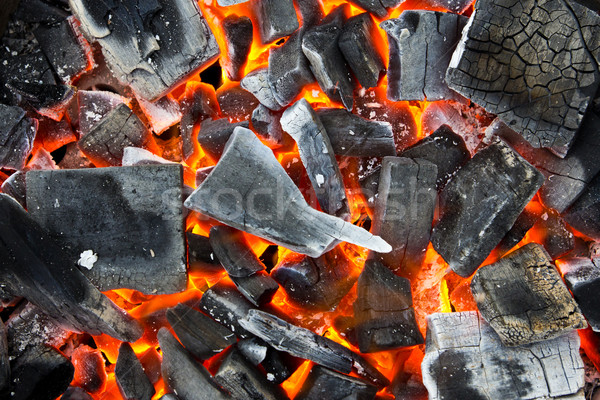 coals in the fire Stock photo © tungphoto
