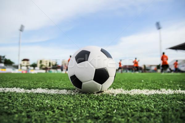 футбольным мячом зеленая трава Футбол спорт футбола лет Сток-фото © tungphoto