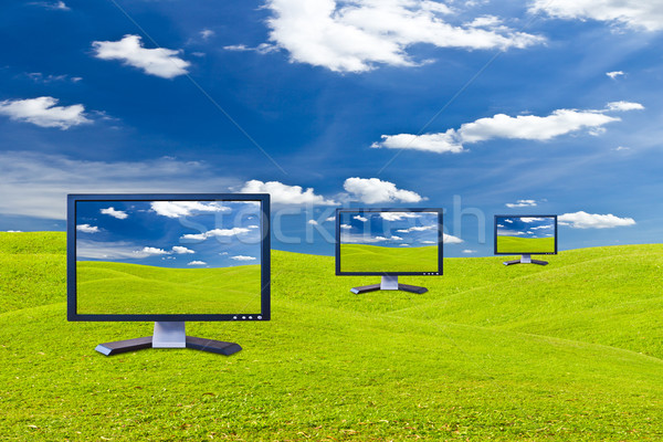 Lcd monitor on green grass meadow Stock photo © tungphoto