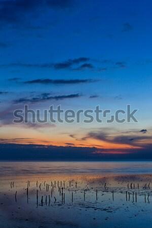 Bella mare crepuscolo acqua tramonto panorama Foto d'archivio © tungphoto