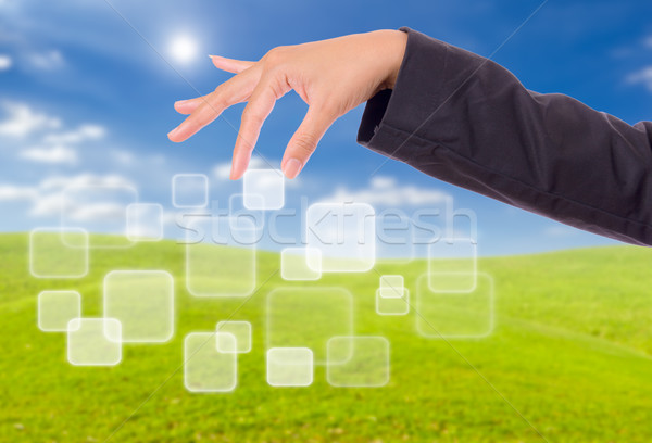 hand bring up button Stock photo © tungphoto