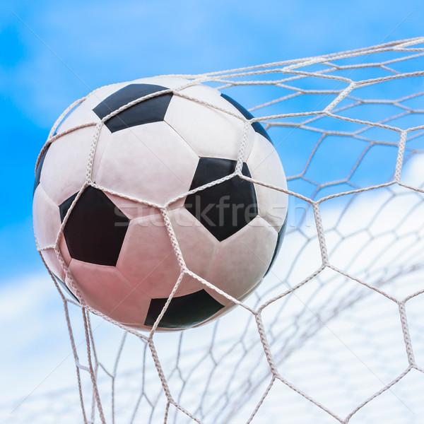 Zdjęcia stock: Piłka · cel · netto · piłka · nożna · sportu · piłka · nożna