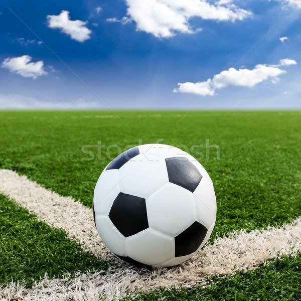 Futball zöld fű mező futball kék ég sport Stock fotó © tungphoto