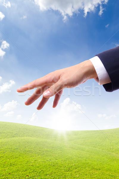 hand bring new day Stock photo © tungphoto