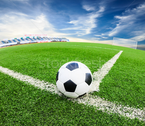 soccer ball on green grass field Stock photo © tungphoto