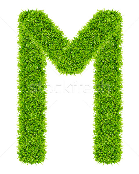green grass letter M Isolated Stock photo © tungphoto