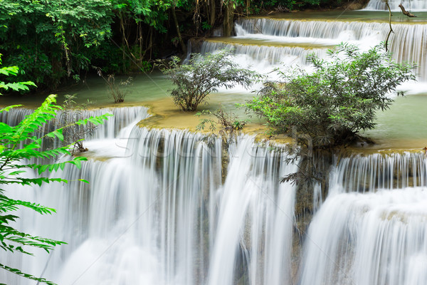 Víz ősz szint Thaiföld fa tavasz Stock fotó © tungphoto