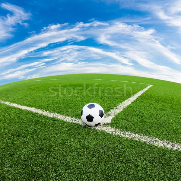 サッカーボール 緑の草 フィールド サッカー スポーツ サッカー ストックフォト © tungphoto