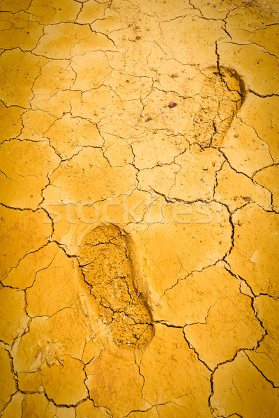 footprint on dry crack soil Stock photo © tungphoto