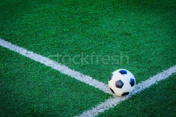 Piłka zielona trawa piłka nożna sportu piłka nożna lata Zdjęcia stock © tungphoto
