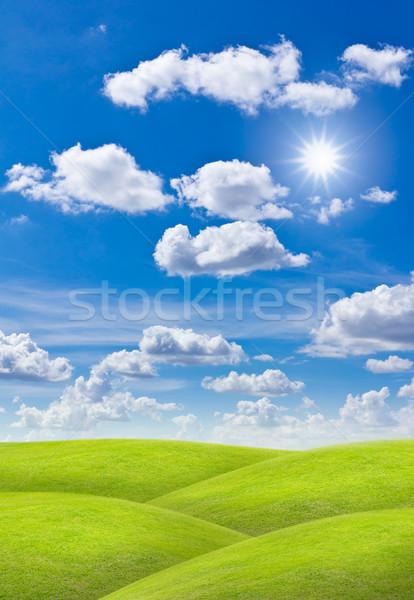 Weide blauwe hemel voorjaar gras natuur veld Stockfoto © tungphoto