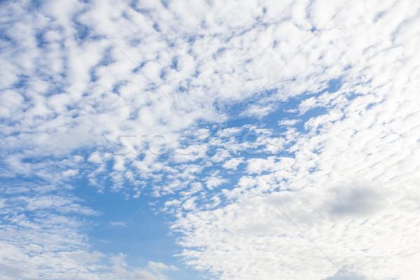 облаке Blue Sky весны природы пейзаж лет Сток-фото © tungphoto