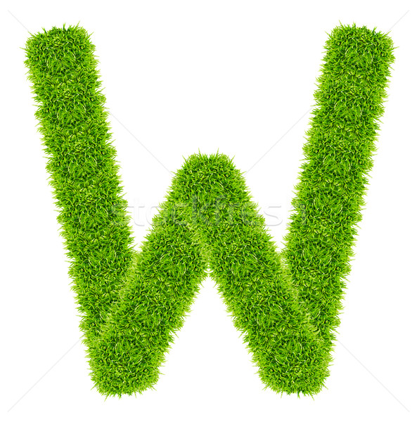 green grass letter W Isolated Stock photo © tungphoto