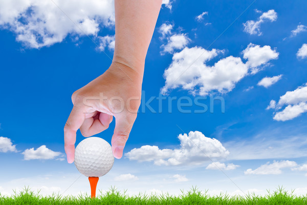 hand put golf ball on tee Stock photo © tungphoto