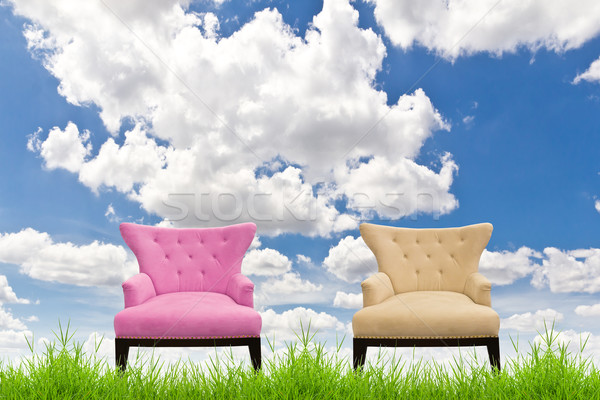 pink and cream sofa on green grass against blue sky Stock photo © tungphoto