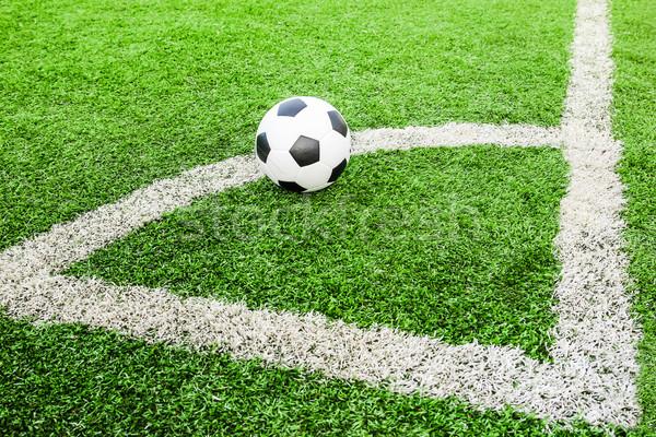 Futball zöld mező futball sport nyár Stock fotó © tungphoto