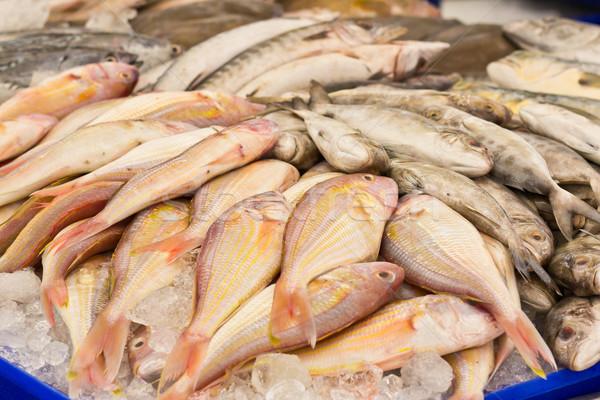 свежие рынке продовольствие группа рыбалки Сток-фото © tungphoto