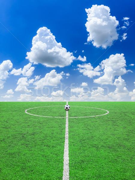 soccer football field Stock photo © tungphoto