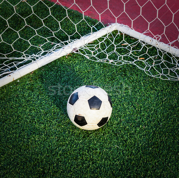 soccer ball on green grass in goal net Stock photo © tungphoto