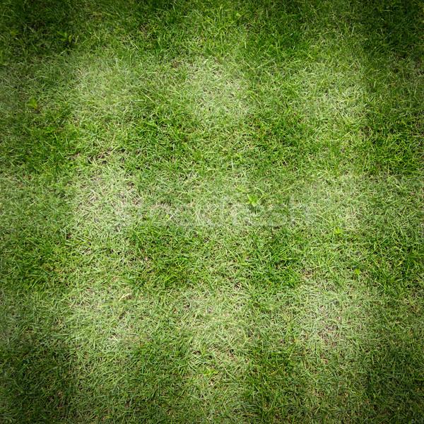 Zöld fű fű sport tájkép futball mező Stock fotó © tungphoto