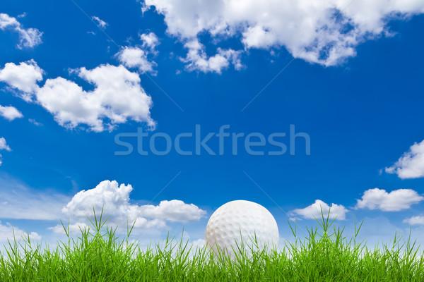 мяч для гольфа зеленая трава Blue Sky небе трава спорт Сток-фото © tungphoto