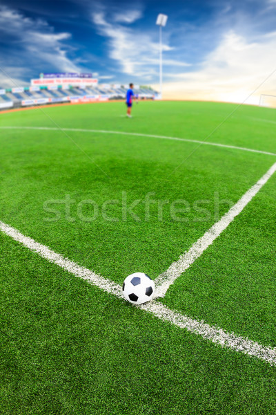 soccer ball on green grass field Stock photo © tungphoto