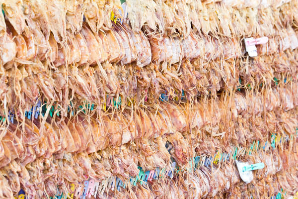 Dried Squid showing for sell Stock photo © tungphoto