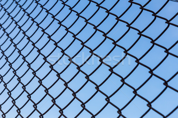 wire fance Stock photo © tungphoto