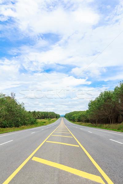 Vidék oldal út égbolt fa tavasz Stock fotó © tungphoto