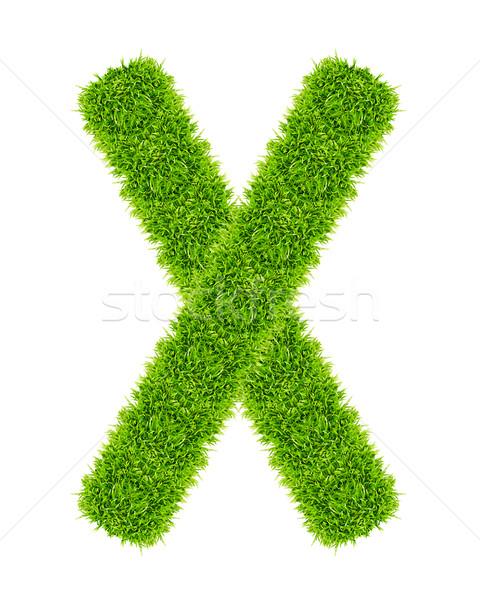 Groen gras brief geïsoleerd school kunst lezing Stockfoto © tungphoto
