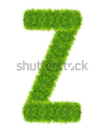 green grass letter Z Isolated Stock photo © tungphoto