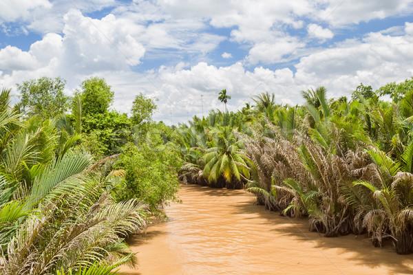 Rio delta Vietnã nuvens floresta Foto stock © tuulijumala