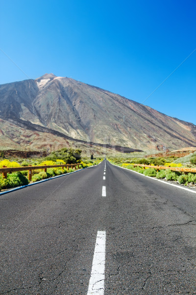 Country asphalt road background with focus on foreground and blu Stock photo © tuulijumala