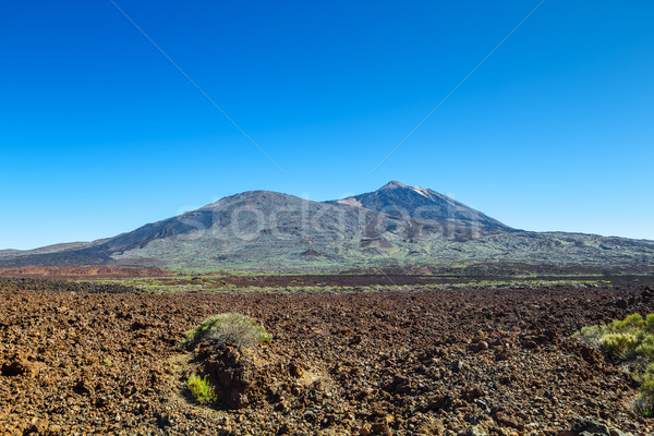 Teide volcano naitional park in sunny day, Tenerife island, Spai Stock photo © tuulijumala