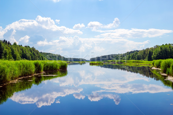 Forest river landscape with clouds reflection in the water.  Stock photo © tuulijumala