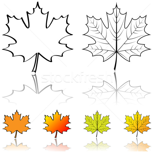 Black and white vector shapes of maple leaf with four color samp Stock photo © tuulijumala