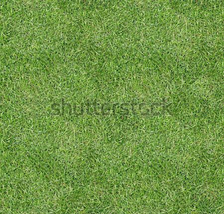 Seamless square green grass texture. Stock photo © tuulijumala