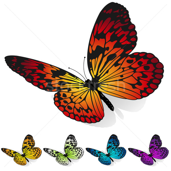 Vector set of colorful butterflies sitting on the surface isolat Stock photo © tuulijumala