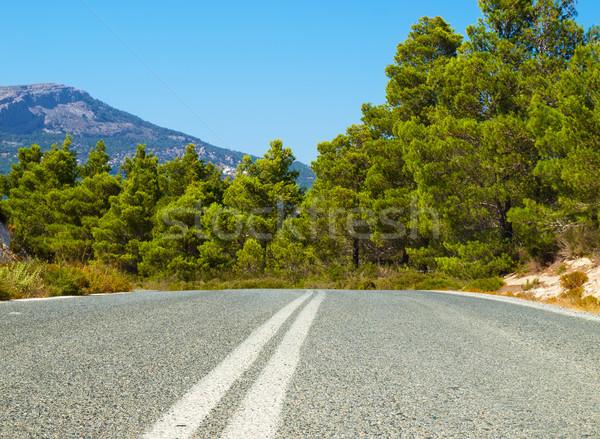 The asphallt road leading through the Rhodes island, Greece. Stock photo © tuulijumala
