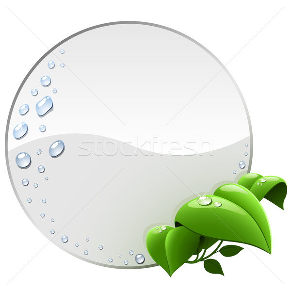 Blank round environmental label with green leaves isolated on wh Stock photo © tuulijumala