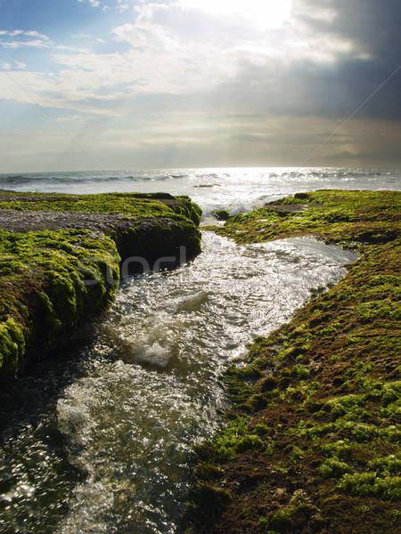 Lucido stream esecuzione terreno bali Ocean Foto d'archivio © tuulijumala