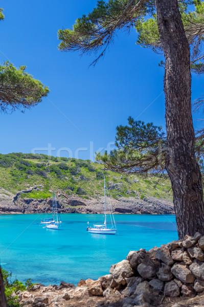 Hermosa isla turquesa agua Foto stock © tuulijumala