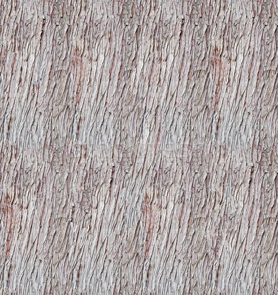 Egyenetlen fa ugatás végtelenített textúra fa Stock fotó © tuulijumala