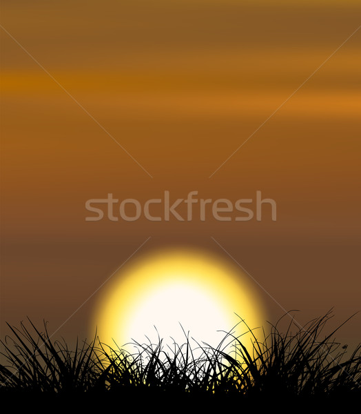 Background illustrating sunset with the grass shape in the front Stock photo © tuulijumala
