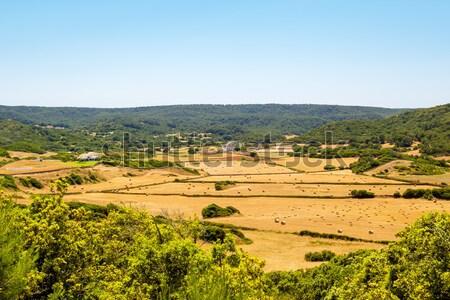 Menorca island landcape with farmland and green hills Stock photo © tuulijumala