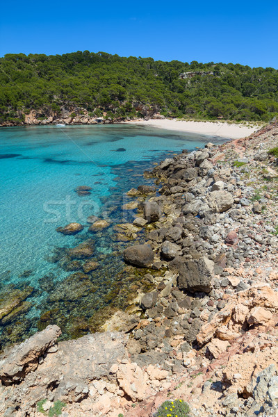 Platja des Bot beach at Algaiarens cove in sunny day Stock photo © tuulijumala